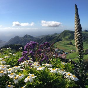 Anaga Las Mercedes hiking on Anaga Wandern Auf Teneriffa Gregorios wanderfamily Tenerife