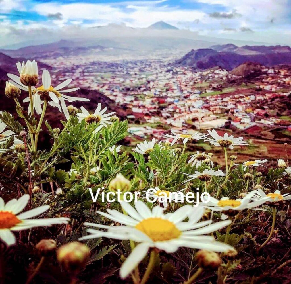 Norte de Tenerife. Gregorios wanderfamily