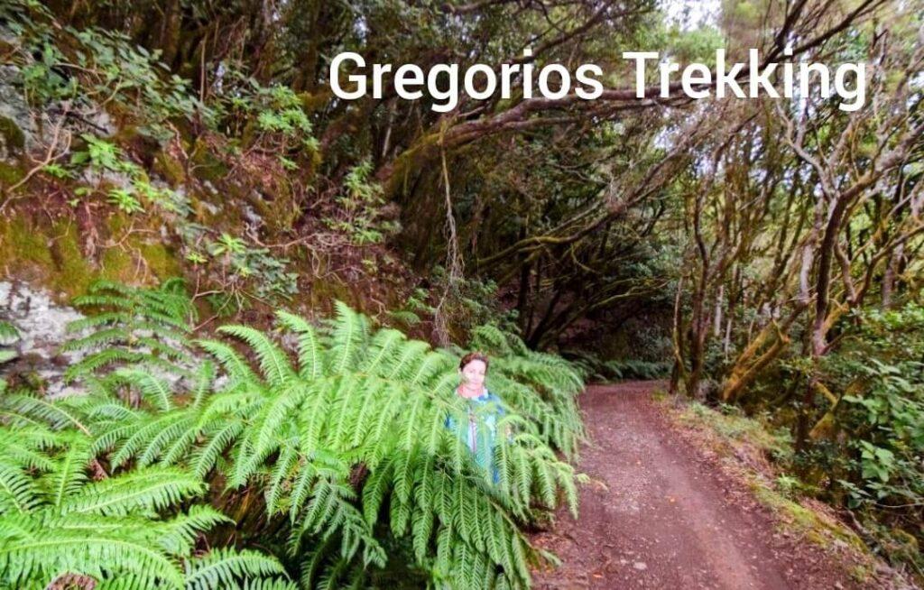 La Gomera Gregorios trekking